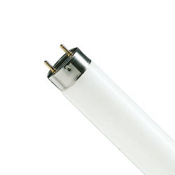 BIPIN FLUORESCENT TUBE//LAMP F13T5//CW PACK OF 60