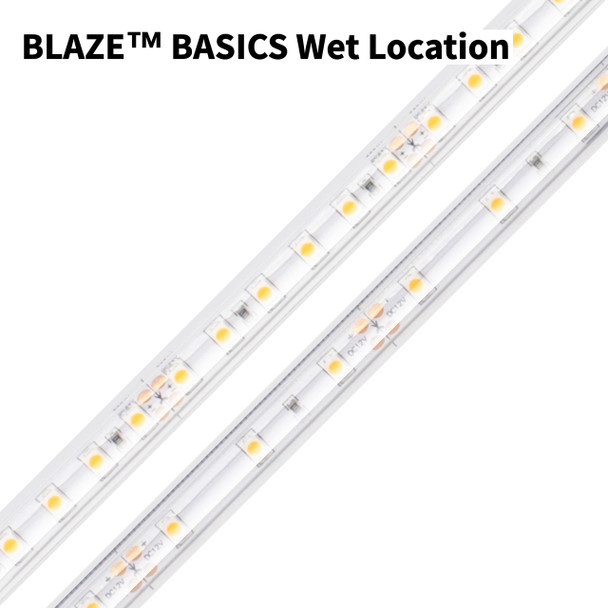 Diode LED Blaze Basic Low Voltage Dimmable - 2700K/3000K/5000K - 12V or 24V Input, Wet Location | LED Tape Light