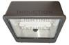 "FSWS120 120W Induction Shoe Box Light Fixture 23"" Housing, Wide Angle Reflector, Flood Light, Parking Lot Light 5000K"