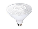 PAR38 LED Bulbs Commercial Grade - Case