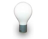 ILTD Kum HO Style Sperical / Globe Induction Bulb