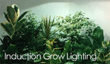 Induction Plant Grow Light Fixtures