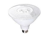 LED PAR38 Light Bulbs and Lamps