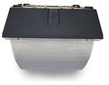 IGF2 Induction Canopy Light / Garage Light Fixture