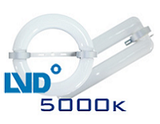 LVD Replacement 5000k Lamps