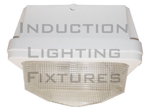 """120w Induction Gas Station / Tunnel 18"""" Fixture for Surface and Canopy Mounting 120 Watt"""