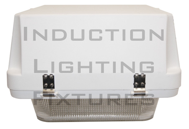 """250w Induction Gas Station / Tunnel 18"""" Fixture for Surface and Canopy Mounting 250 Watt"""