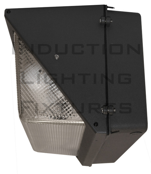 IWP80 80W Large Induction Outdoor Wall Mount Wall Pack Light Fixture 80 watt