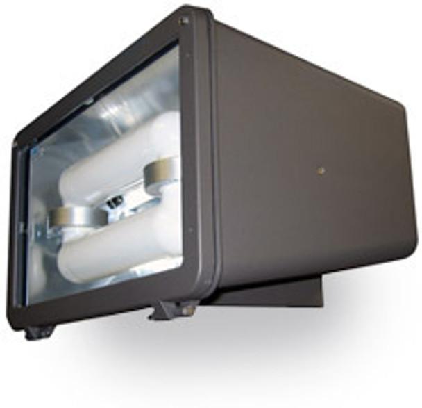 FID60 Series 60W Induction Flood Light Fixture with Rectangular face for outdoor lighting 60 Watt