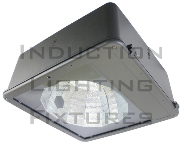 "FSV300 Series 300W Induction Spot Light Fixture 23"" Housing Type 5 Reflector Flood Light , Parking Lot Light 300 watt"