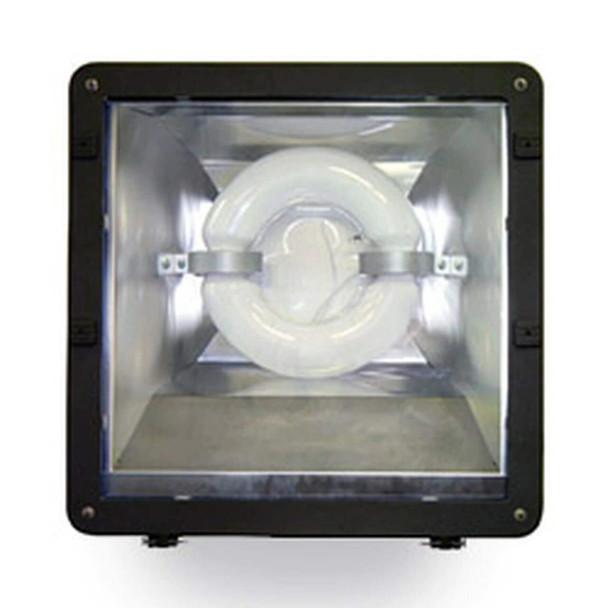 """FSDR150 150w Induction Shoe Box Light Fixture 23"""" Housing Smooth Reflector, Flood Light, Parking Lot Light 5000K"""