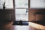 Doormat Maintenance: How to Clean Different Types of Doormat