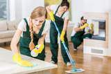 The Ultimate Guide on How to Keep the Floor Clean Everyday