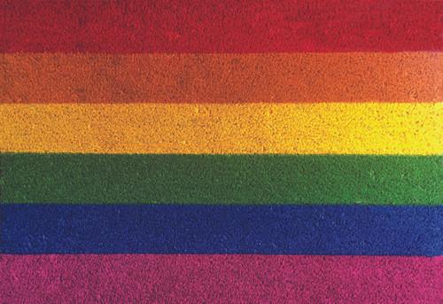 Gay Pride Rainbow Door Mat For Double Doors