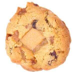Fudge and Raisin Cookie