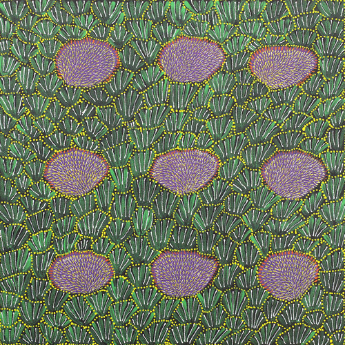 Hazel Morton Kngwarreye - SP7331