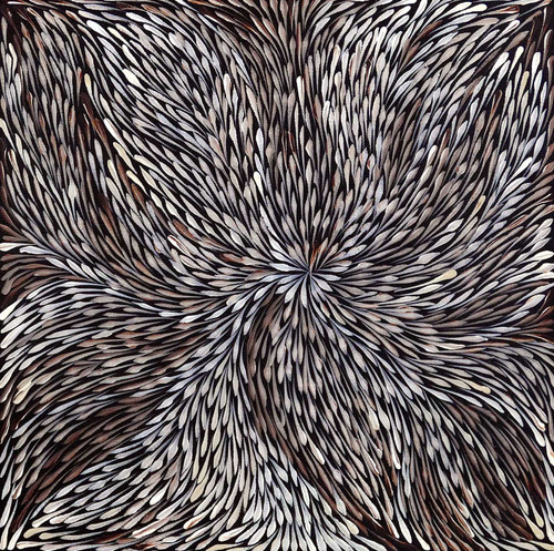 Sacha Long Petyarre - MB055546