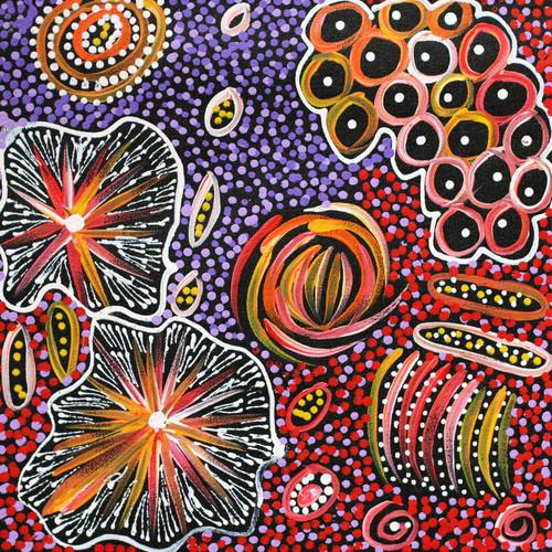 Janet Golder Kngwarreye - SP7530