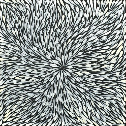 Sacha Long Petyarre - SP7549