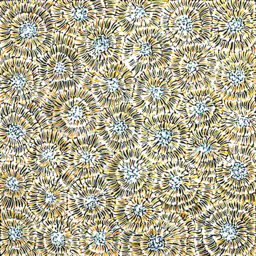 Audrey Morton Kngwarreye - SP7562