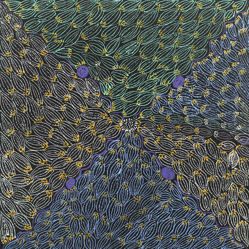 Colleen Morton Kngwarreye - SP7569