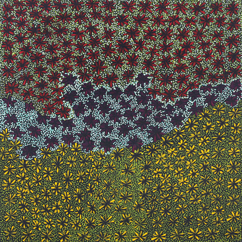 Colleen Morton Kngwarreye - SP7627
