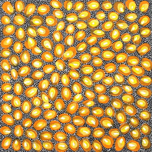 Selina Teece Pwerle - SP7761