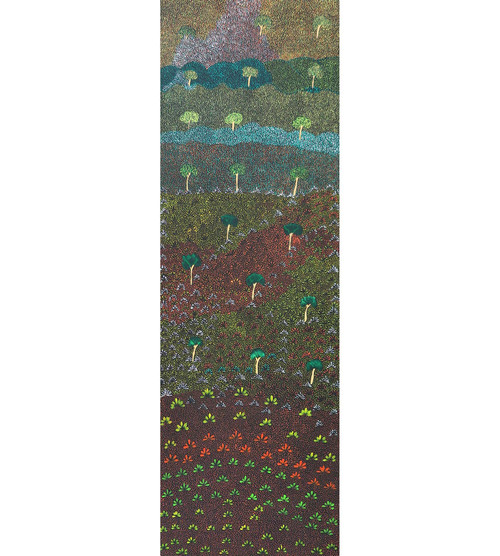 Colleen Morton Kngwarreye - MB056257