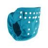 Pilchers Aqua Blue