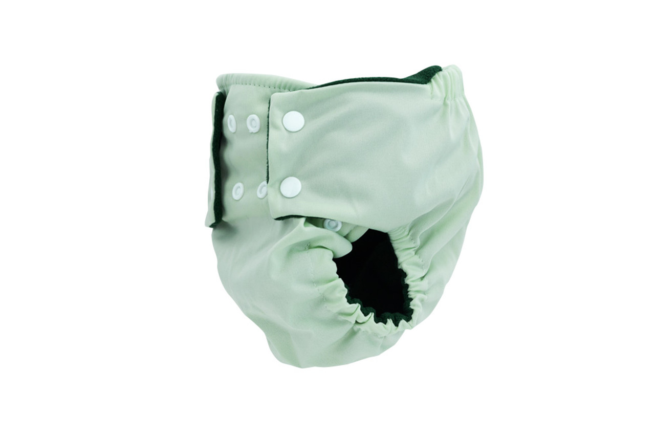 Pea Pods Reusable Nappy Pastel Green