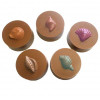 Assorted Shells - Round Cookie Chocolate Plastic Mold (Oreo)