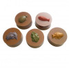 Turtle / Frog / Fish - Round Cookie Chocolate Plastic Mold (Oreo)