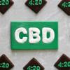 CBD Business Card - Plastic Chocolate Mold