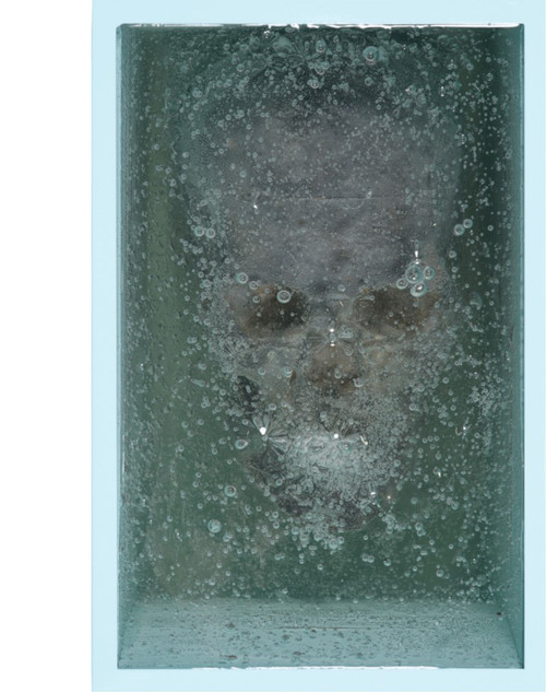 Autobiographical Memory_Bae Jeong Moon_2019_Sculpture_Stainless steel + skull + gell wax