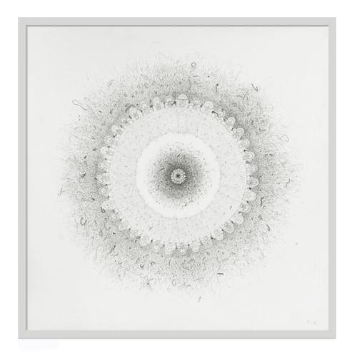 LIM Jiye_Blossom_2020_Drawing, Silk & Cotton Thread on Canvas
