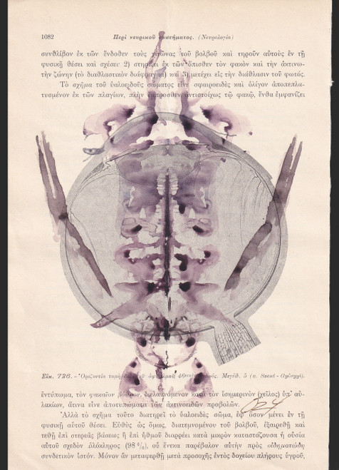 1082_0z4_2021_Ink, Watercolour on Page of an Antique Anatomy Medical Book_Rorschach