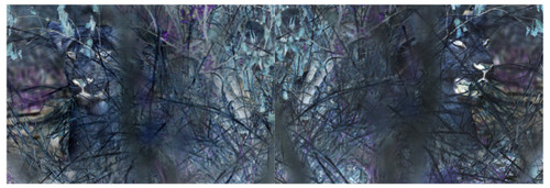 Psychodelic Diversion (Diptych) by Katya Shkolnik. 2013. ChromaLuxe Fine Art Print on Aluminium. Edition of 7