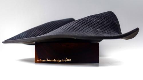 'Where Knowledge is Free 2021',  by Revati Sharma Shingh