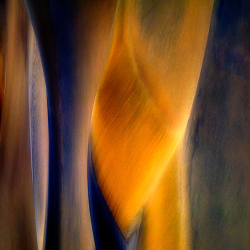 Knight with the Lance by M(M) Boguszak. 2020. Photo under acrylic glass, aluminium floating frame Limited edition 1/5, 2 AP. Abstract.