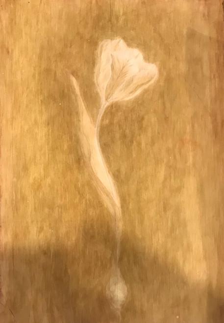 Tulip by Elisabeth H.J Den Boer. 2021. Egg tempera on gesso panel.
