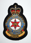 22 Squadron Crest Patch