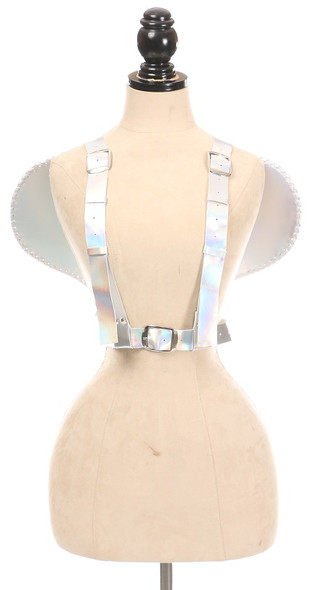 front view of silver wing harness