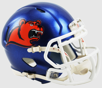 Coast Guard Mini Speed Football Helmet