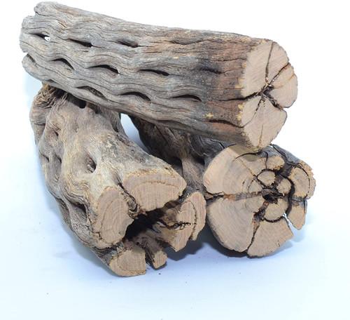 Large Cholla Wood