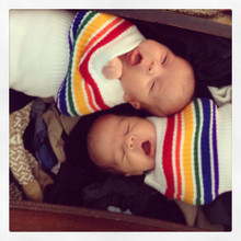 welcome home your rainbow babies swaddled in their pride socks swaddle