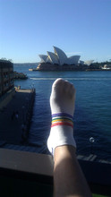 enjoy traveling while your feet remain comfortable in their moisture wicking pride socks