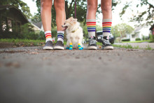 fee fee loves your pride socks