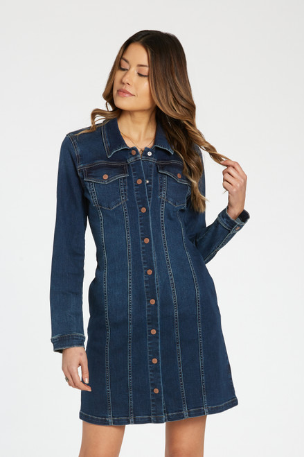 Josephine Denim Mini Dress