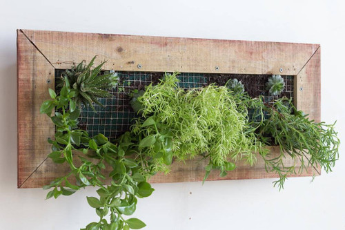 This wooden wall planter box will add beautiful splashes of colour to your outdoors and garden. The wall planter is a decorative and space saving way to display succulents, herbs and flowers.