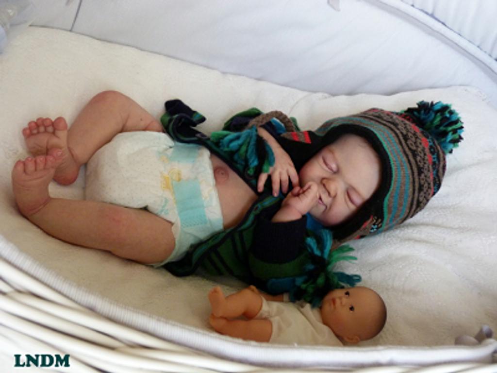 Rosie Reborn Vinyl Doll Kit by Sandy Faber